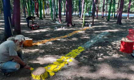"Land Art ""Utopia 2020"", Poenari Gorj"
