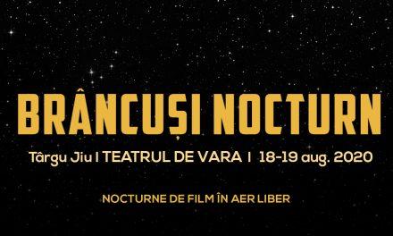 Brâncuși Nocturn: filme de(spre) artă în aer liber, ediția II