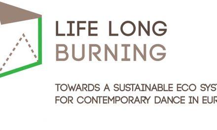 Rezidențe si producții organizate de Asociația 4Culture în cadrul Life Long Burning