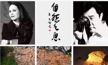 "Mirela Iordache ""Breath of Nature"" @ Galeria Whats Art Gallery, Osaka, Japonia"