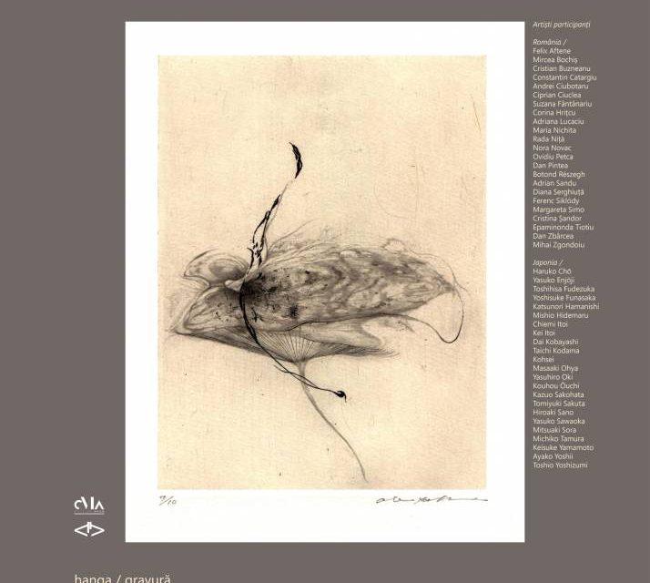"Expoziție ""Bird's Eye View"" @ Muzeul de Artă Arad"