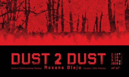 Instalație video Roxana Bloju, Dust 2 Dust @ Theresia Bastion, Timișoara