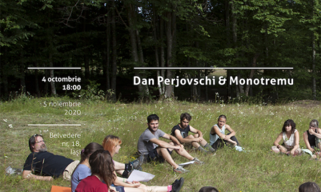 Expoziție Dan Perjovschi și Monotremu: Școală-te! @ Art+Design și Borderline Art Space, Iași