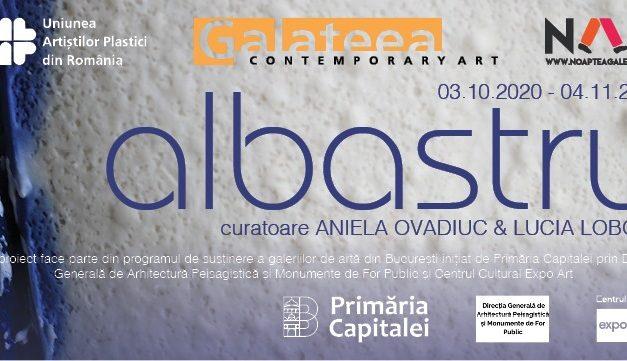 Galateea Contemporary Art la NAG