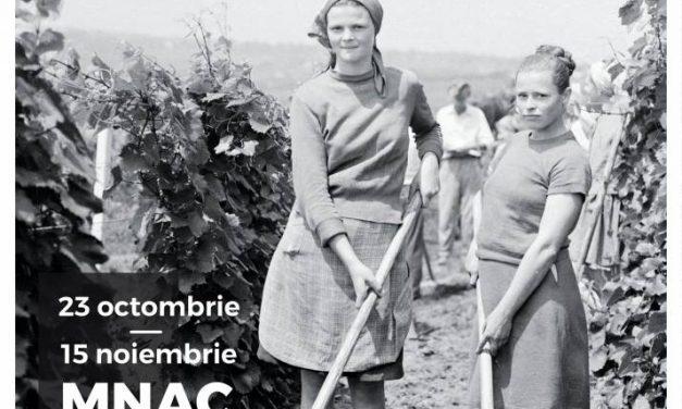 A început digitalizarea a 40 de ani de istorie Colecția Agapi salvată de la distrugere