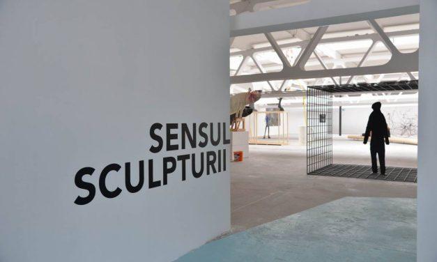 Sensul sculpturii – vernisaj @ kunsthalle bega – timisoara