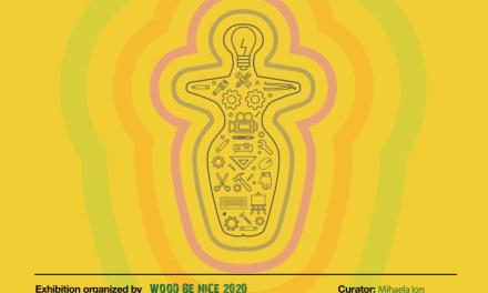 NeoNlitic – un proiect expozițional inedit, din 14 noiembrie 2020, la Muzeul Național de Istorie a României