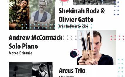 Transilvania Jazz Festival 2020 – online (13-14 noiembrie)
