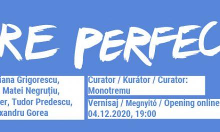 Future Perfect #2 / Viitor Anterior #2 @ Casa Tranzit, Cluj-Napoca