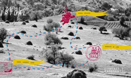 Muzeul Național al Țăranului Român relansează tururile sale virtuale