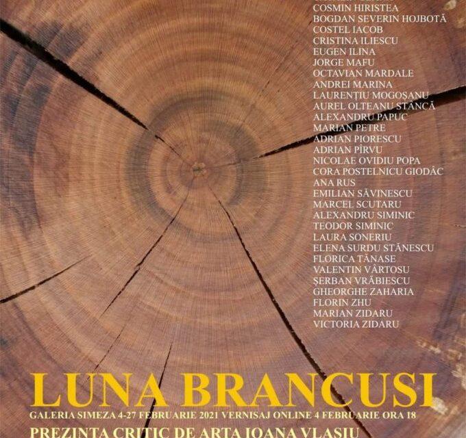 Luna Brâncuși @ Galeria Simeza, București