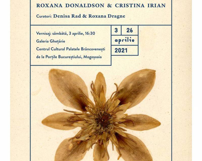 """Expoziție Roxana DONALDSONșiCristina IRIAN """"FRAGMENTUM"""" @ Centrul Cultural """"Palatele Brâncovenești de la Porțile Bucureștiului"""""""