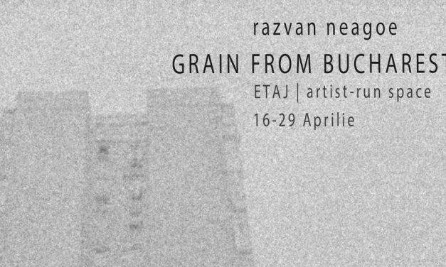"Răzvan Neagoe ""Grain from Bucharest"" @ E T A J artist-run space"