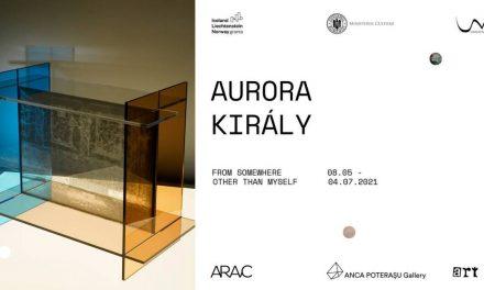 Solo show: Aurora Király la Galeria Anca Poterașu