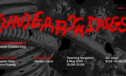 """Traian Cherecheș """"(UN)Earthings"""" @ Atelier 35, București"""