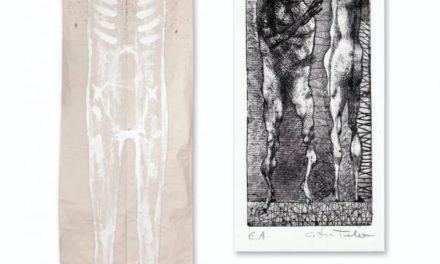"""Expoziție Adriana Lucaciu și Cristian Tarbă """"Identități"""" @ Muzeul de Arta Modernă și Contemporană Pavel Șușară"""