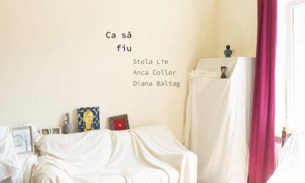 "expoziție""Ca să fiu"": Stela Lie, Anca Collerși Diana Baltag"