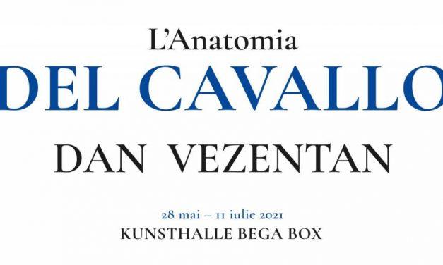 """Dan Vezentan """"L'Anatomia del Cavallo"""" @ Kunsthalle Bega"""