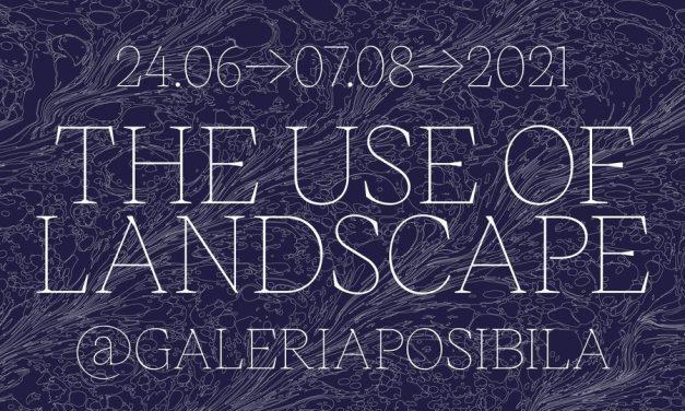 The Use of Landscape @ Galeria Posibilă, București