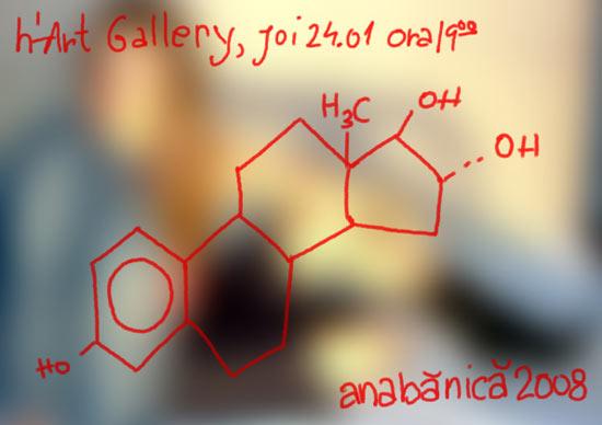 "Ana Banica ""C18H24O2"" @ H'art Gallery, bUCURESTI"