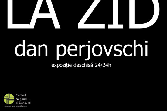 """Dan Perjovschi """"La zid"""" @ CNDB"""