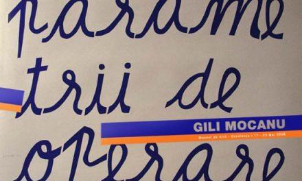 "Gili Mocanu""Parametrii de operare"" @ Muzeul de arta Constanta"