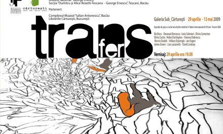 TRANSFER, expozitie de pictura cu lucrări din cadrul Taberei Internaţionale de Pictură Experimentală – Tescani 2008 Galeria Sub_Carturesti