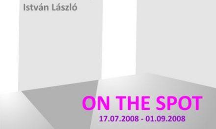 "expozitia ""On the spot"" semnata Suzana Dan, Botond Ferenczy si Istvan Laszlo @ Anaid Art Gallery"