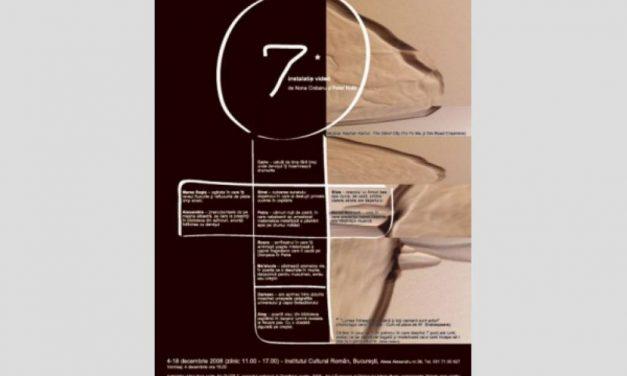 7 – instalatie video de Nona Ciobanu si Peter Kosir