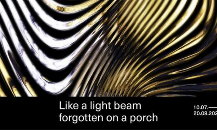 "Andrei Sclifos, Leonardo Silaghi ""Like a Light Beam Forgotten on a Porch"" @ IOMO Gallery, București"