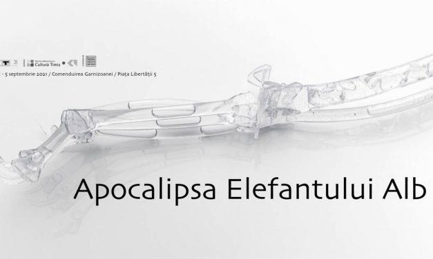 Apocalipsa elefantului alb – expoziție de artă contemporană, la Timișoara, cu 40 de artiști din România și din străinătate
