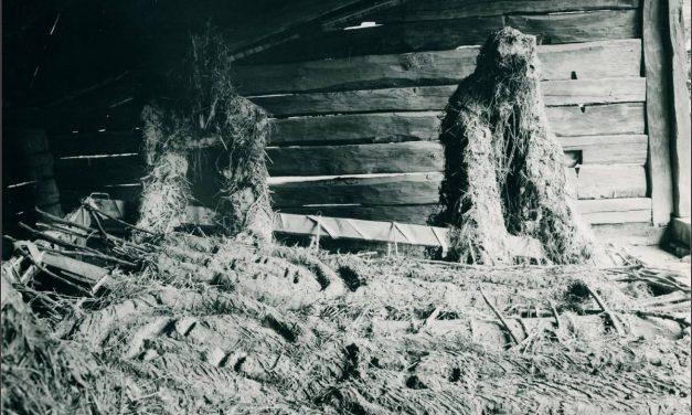 """Expoziție """"Locul – faptă și metaforă"""" de la Muzeul satului și de artă populară, 1983"""