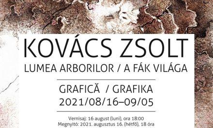 """Expoziție Kovács Zsolt """"Lumea arborilor/A fák világa"""" @ Muzeul de Artă Cluj-Napoca"""