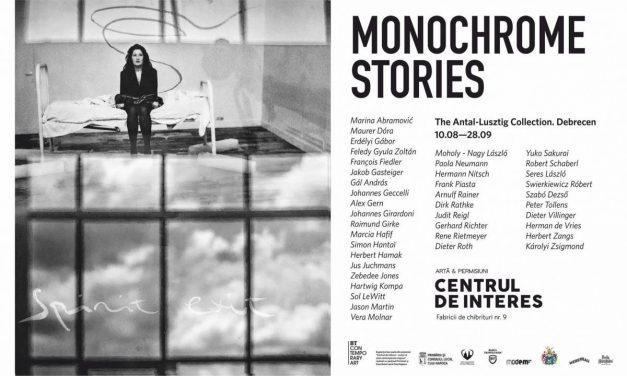 Cea mai mare colecție privată de artă din Ungaria, expusă la Centrul de Interes. Marina Abramović, Gerhard Richter sau Sol LeWitt, printre artiștii expuși
