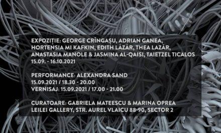 Digital art, performance, muzică experimentală și rețele la Galeria Leilei din București