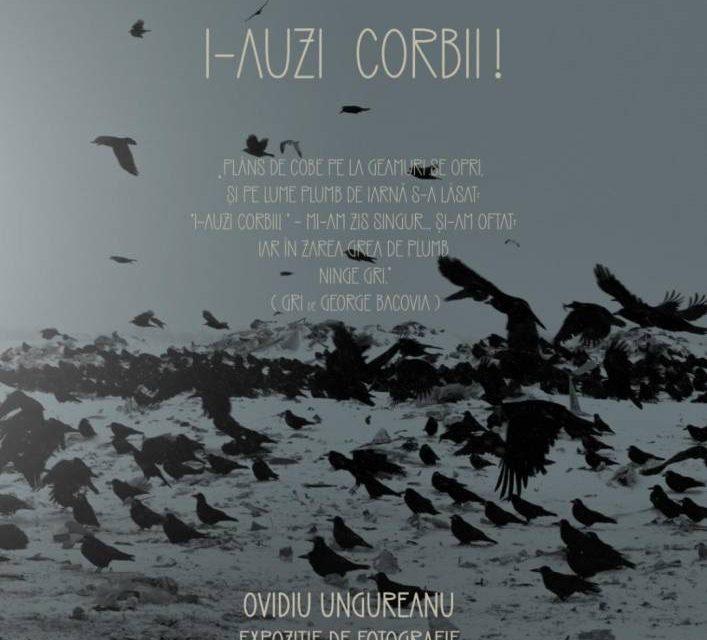 """Expoziție de fotografie Ovidiu Ungureanu """"I-auzi corbii"""" @ Muzeul de Artă din Bacău"""