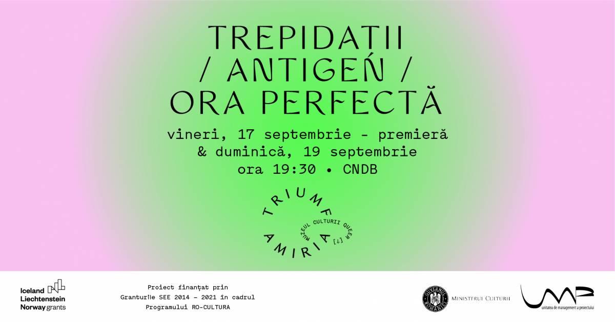 """TRIUMF AMIRIA. Muzeul Culturii Queer [?] prezintă """"Trepidații/ Antigen/ Ora perfectă"""""""