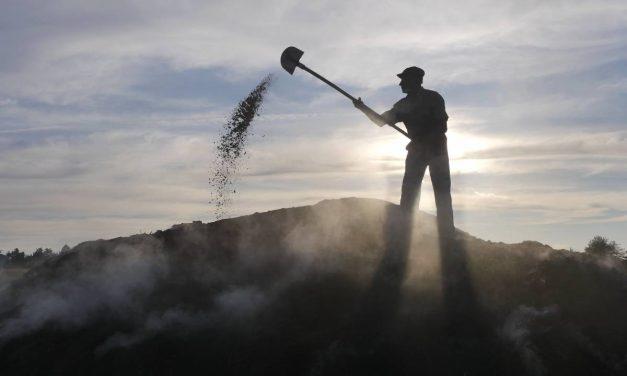 Cărbunarii și cărbunăritul pe cale de dispariție – fotoreportaj @ PressOne