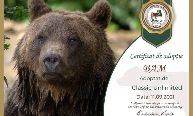 Final de Classic Unlimited 2021: 9 concerte, peste 1.000 de participanți și doi urși adoptați