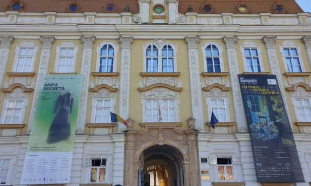 Aripa Secreta – Muzeul de Arta Timisoara  – ArtEncounters
